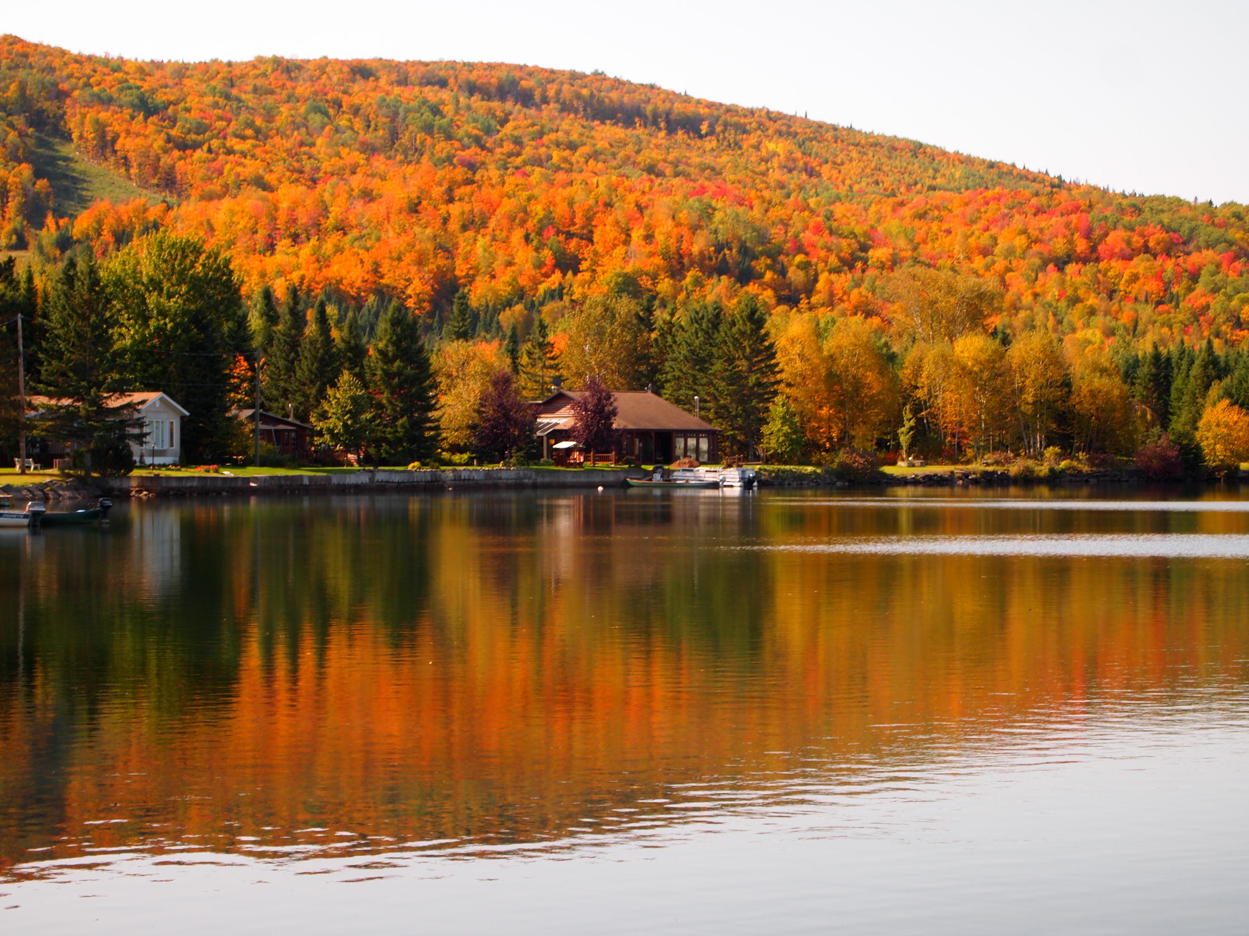 Paysages d 39 automne paysages - Photo d automne gratuite ...