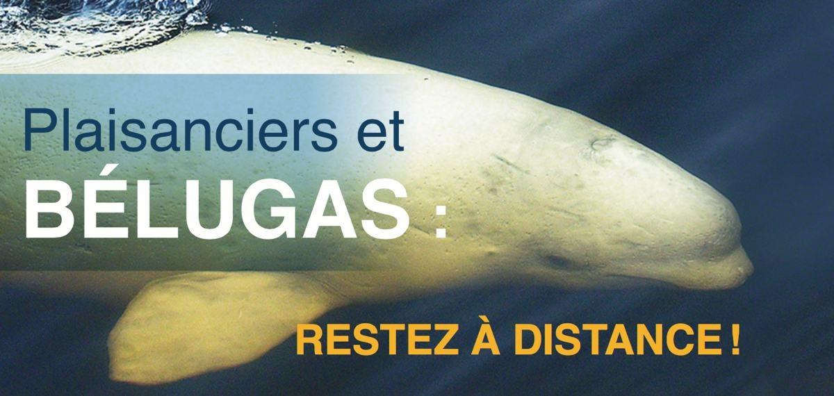 Rencontres riviere-du-loup